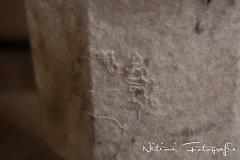 NF-2014_DSC6010